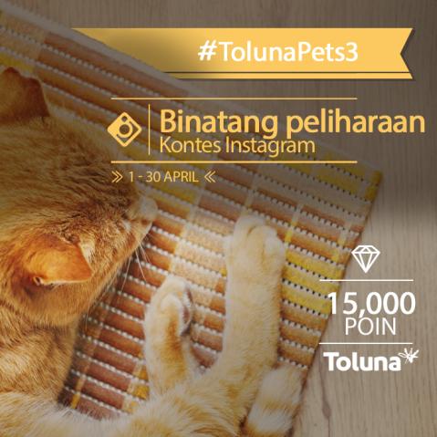 TolunaPets _ ID